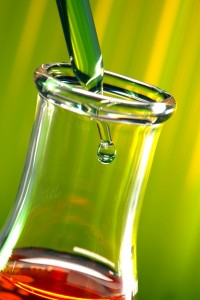 ernlemeyer fond vert, test et études sur le xylitol de bouleau