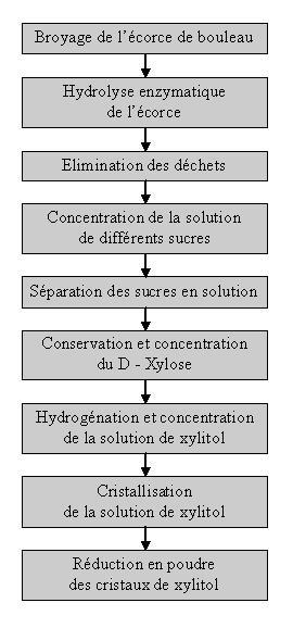 process de fabrication du xylitol : l'édulcorant naturel de bouleau